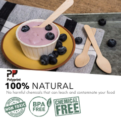 Eco-Friendly Ice Cream Yogurt Wooden Small Spoon